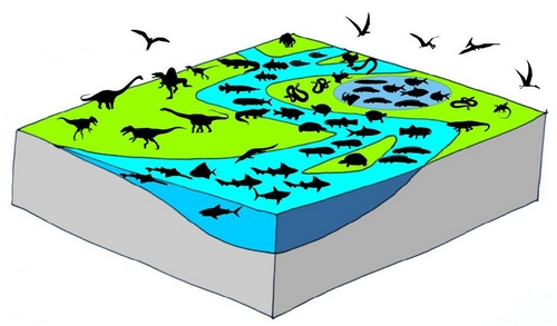 Bousculade chez des dinosaures carnivores le dinoblog - Dinosaure marin carnivore ...