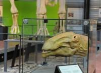 La halle aux dinosaures de l'Aude