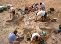 Le chantier de fouilles de Bellevue
