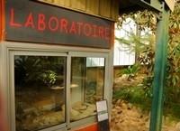 Le laboratoire et les collections